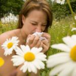 Alergia możliwa do zwalczenia